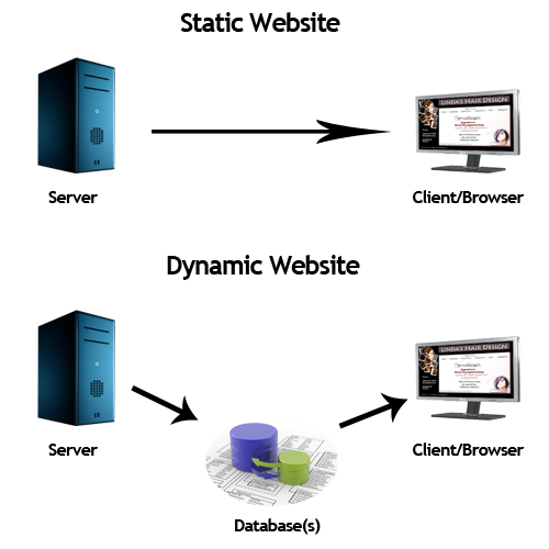 Static and Dynamic Websites | PATRICIA GOMEZ